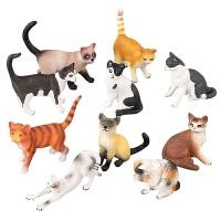 儿童猫咪模型套装玩耍小猫咪模型假猫摆件动物黑白小猫玩具 十款一套