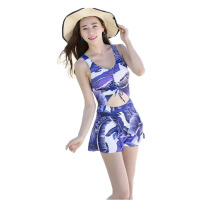 泳衣女连体裙式小胸聚拢遮肚大码温泉泳装