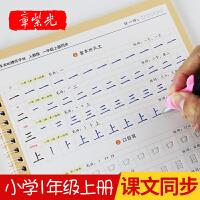 章紫光一年级上册同步练字帖儿童凹槽楷书小学生字帖练字本初学者