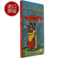 【现货】英文原版 我是一只小兔子 I Am a Bunny (Little Golden Book) 0-3岁适读 斯