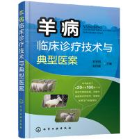 羊病临床诊疗技术与典型医案