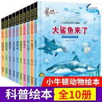 小牛顿科学馆恐龙大追踪好玩的动物宝宝百科dk幼儿百科全书那些重要的动物大鲨鱼来了海洋动物百科大全书海底世界十万个为什么