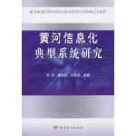 黄河信息化典型系统研究