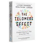 【中商原版】端粒效应 英文原版 The Telomere Effect 伊丽莎白布莱克本 埃利萨埃佩尔 诺贝尔生理医学