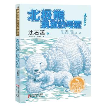 北极熊飘逝的母...