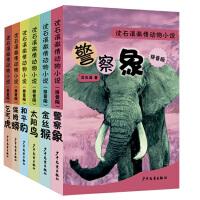 沈石溪激情动物小说拼音版系列(共6册)