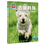 正版全新 什么是什么・珍藏版(第3辑):忠诚的狗