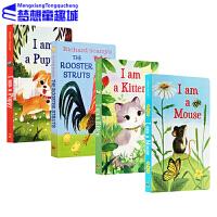 英文原版绘本0 3岁 I am a Kitten/PUPPY/Mouse 我是一只兔子 I am a Bunny 系列
