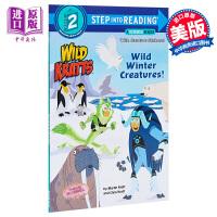 【中商原版】Step Into Reading2:Wild Winter Creatures!-Dlx Sir 阅读进阶