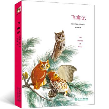 飞禽记 与《瓦尔登湖》并称美国自然文学的双璧,60幅著名博物学画家奥杜邦的鸟类手绘插图