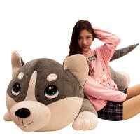菲洛林 送女生毛绒玩具 创意表情哈士奇公仔二哈趴趴狗娃娃抱枕送儿童女生礼物
