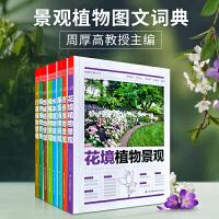 植物造景丛书 8本1套 周厚高主编 地被藤蔓行道水体阴地绿篱芳香花境植物植物与景观设计书籍