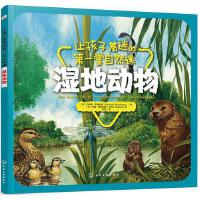 让孩子着迷的第一堂自然课湿地动物十万个为什么绘本儿童科普读物启蒙故事书3-4-5-6-7周岁小学生一二年级课外图书籍少