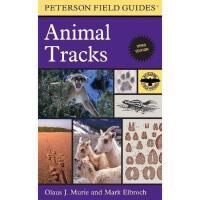 【预订】A Field Guide to Animal Tracks
