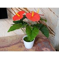 假花50厘米桌摆红掌仿真植物花盆栽盆景套装小型装饰花卉客厅摆设