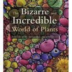 【预订】The Bizarre and Incredible World of Plants