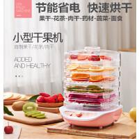 金正 干果机小型家用干果机水果蔬菜烘干食物智能断电风干机 可调升降