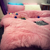 韩版羊羔绒珊瑚绒天鹅绒色水貂绒四件套冬加厚保暖床单被套床上