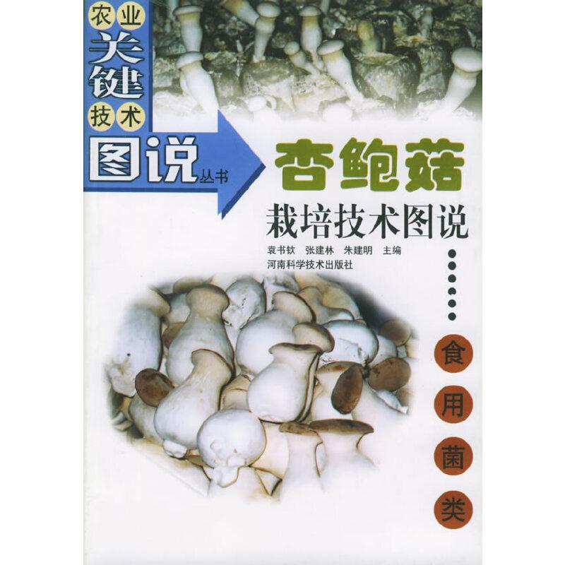 杏鲍菇栽培技术图说(食用菌类)——农业关键技术图说丛书·食用菌类