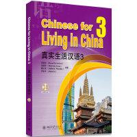 真实生活汉语3