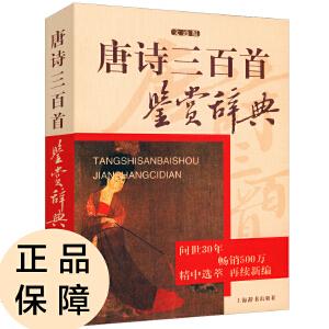 唐诗三百首鉴赏辞典(文通版)
