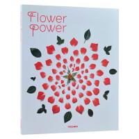 Flower Power 花卉的力量 植物花艺在平面空间的应用与运用 插花艺术书籍 花艺设计原理 花瓶 桌子 刷子等 花