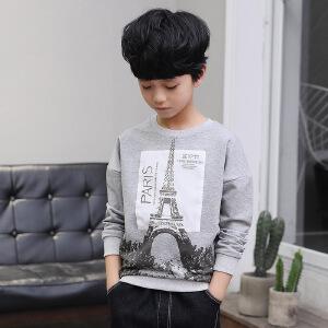 乌龟先森 儿童T恤 男童棉质圆领长袖印花套头上衣秋季韩版新款时尚休闲百搭中大童款卫衣