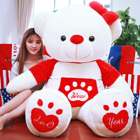 毛绒公仔娃娃送女生 抱抱熊毛绒玩具泰迪熊猫公仔可爱布娃娃女孩生日礼物情人节送女友
