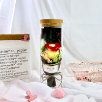 玫瑰花永生花发光永生花礼盒玻璃罩情人节生日礼物保鲜干花蓝色妖姬玫瑰花束