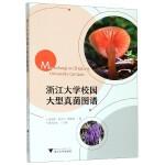 浙江大学校园大型真菌图谱