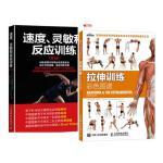 拉伸训练彩色图谱 肌肉拉伸健美肌肉训练书 +速度灵敏和反应训练第3版 教练员训练素材书籍女无器械运动健身教程大全 男练