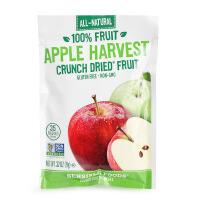 美国明智宝宝零食 脆干果片 富士苹果干脆片 非油炸膨化零食