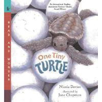 【预订】One Tiny Turtle Read and Wonder