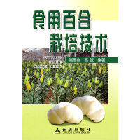 食用百合栽培技术