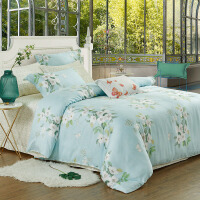 春夏竹语天丝四件套冰丝床单被套床上用品1.8m2.0米床双人