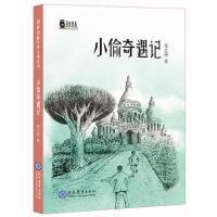 荆棘奶酪儿童文学系列 小偷奇遇记9787510659836 + 限量赠送 2019日历一本