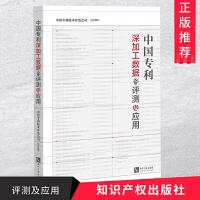 中国专利深加工数据的评测及应用