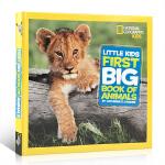 顺丰发货 英文原版 美国国家地理 动物系列 First Big Book of Animals National Ge