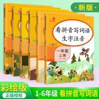 响当当看拼音写词语1-6年级上册全套6本 默写能手人教版小学生生字注音训练 小学语文同步
