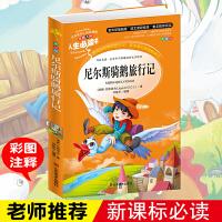 正版 尼尔斯骑鹅旅行记 小学生课外书读物7-10-12岁儿童文学故事书籍 青少版图书 初中青少年