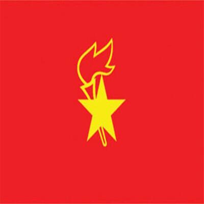 大队旗 大号少先队旗 大队旗 中国少年先锋队队旗 90×120CM  (小队旗)中队旗