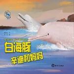 【正版全新直发】白海豚辛迪和妈妈 糖朵朵 9787521001266 海洋出版社