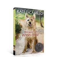进口英文原版正版 Because of Winn-Dixie 傻狗温迪克纽博瑞奖Kate DiCamillo凯特迪卡米