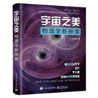 宇宙之美――物理学新探索