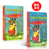 英文原版 i am a bunny 我是一只兔子儿童英文原版绘本richard scarry经典纸板童书绚丽色彩0-3
