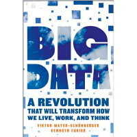 英文原版 大数据时代 Big Data: A Revolution That Will Transform How W