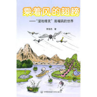 【二手旧书9成新】乘着风的翅膀:湿地精灵――黑嘴鸥的世界 宋晓杰