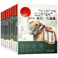 全套8册沈石溪动物小说画本系列全集正版最后一头战象*飞渡儿童6-12-15周岁图书小学生三四五年级课外阅读书籍必读的六