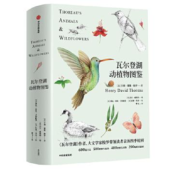 瓦尔登湖动植物图鉴(pdf+txt+epub+azw3+mobi电子书在线阅读下载)