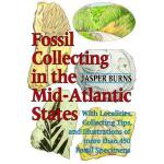 【预订】Fossil Collecting in the Mid-Atlantic States: With